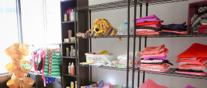 YWRC Toy Shelf